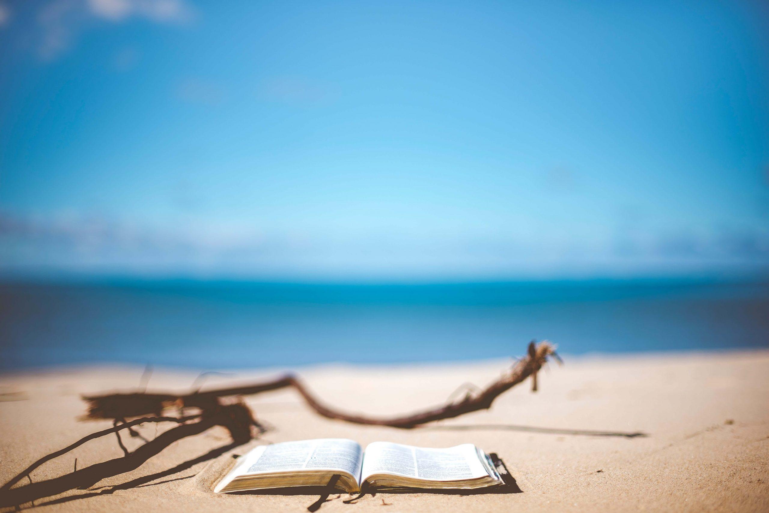summer reading list leituras de Verão 2019