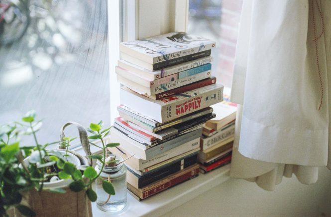 livros para rir muito